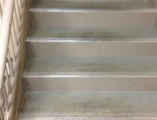 Stairwells Before